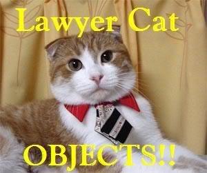 """Law Cat"""